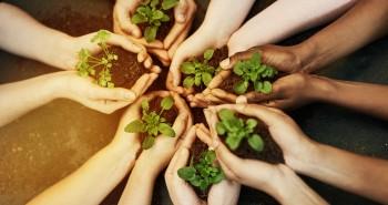 Responsabilidade Social - Programa Indo Fazendo o Bem - Adtalem Brasil